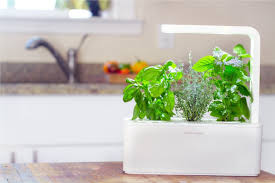 Click And Grow Refills Product Of The Week Click U0026 Grow Smart Garden Assess Myhome