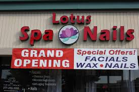lotus spa and nails indianapolis in 46220 yp com