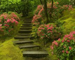 images of beautiful gardens 10 landscape pictures gardens woodland garden and landscape designs