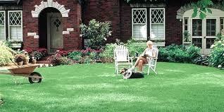 Garden Fountains And Outdoor Decor Modern Patio Vertical Garden And Pink Outdoor Furniture Garden And