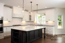 305 Kitchen Cabinets Testimonials Kitchen Remodeling Kitchen Renovation U0026 Design In