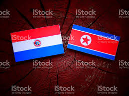 Paraguayan Flag Paraguay Flag With North Korean Flag On A Tree Stump Isolated