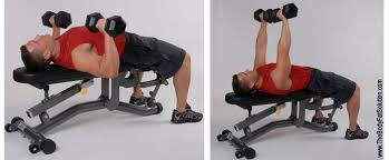 Flat Db Bench The Body Fat Solution Bfs Workout Level 1