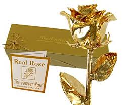 the forever 24k gold dipped real w gold gift box by the