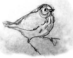 sparrow bird pencil sketch bird art print pencil drawing
