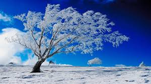 pretty wallpapers for desktop winter computer wallpapers group 91