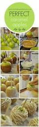 128 best carmel candy apples images on pinterest recipes