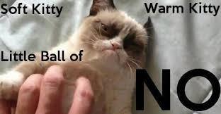 Sleepy Kitty Meme - pin by lelani may on grumpy cat makes me happy pinterest