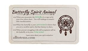 butterfly symbolism and meaning discover the butterfly spirit