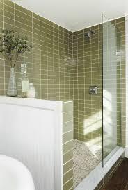 Bathroom Porcelain Tile Ideas by 22 Best Bathroom Ideas Images On Pinterest Bathroom Ideas Home