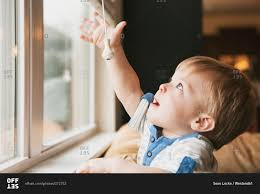 little boy reaching out for window blind cord stock photo offset