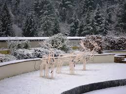new lanark roof garden in winter new lanark world heritage site blog