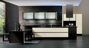 cuisine bi couleur futur intérieur arrital cucine