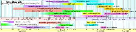 Structural Features Of White Blood Cells Agranulocyte Wikipedia