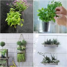 eco in the city 12 nifty apartment balcony garden ideas
