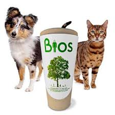 dog urns this online store for pet urns provides you with the most unique