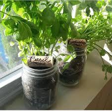 diy self watering herb garden mason jar herb garden add this mason jar herb garden to your outdoor