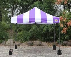 Canopy Photo Booth by Abccanopy Carnival 10x10 Purple With Purple Walls Pop Up Tent