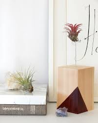 Plant Home Decor 15 Diy Plant Stands To Fill Your Home With Greenery
