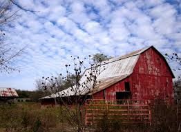 Wallpaper Barn Old Red Barn 6987513