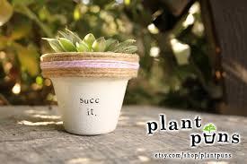 garden pots australia photo album 2 succ it succulent gift succulent cute plant puns