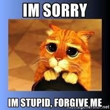 Forgive Me Meme - forgive me meme 28 images i m sorry forgive me im sorry