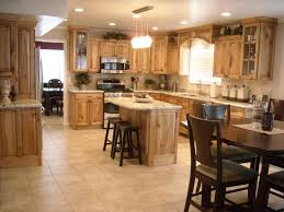 Ideas For Remodeling Kitchen Kitchen Chic Of Remodel Kitchen Design Ideas Pictures Remodel
