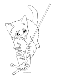 11 images of tabby cat coloring pages realistic tabby cat
