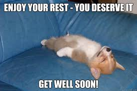 Funny Get Well Meme - enjoy your rest you deserve it get well soon passed out corgi