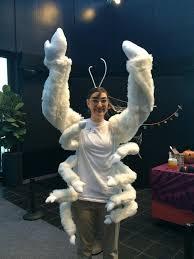 Yeti Halloween Costume National Aquarium Twitter