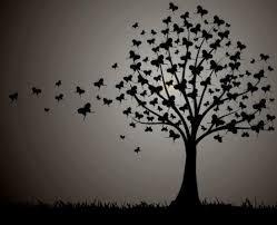 butterfly tree butterfly tree butterfly