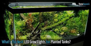 marineland aquatic plant led lighting system w timer 48 60 what s the best led grow lights for aquarium plants home aquaria
