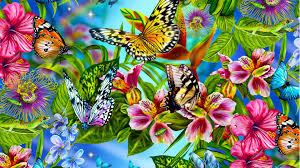 butterflies and flowers 7007867