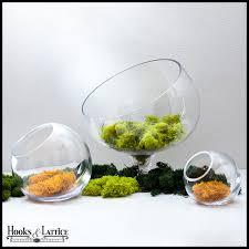 tabletop terrarium glass terrarium containers hooks u0026 lattice