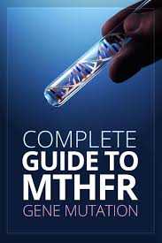 my guide to mthfr gene mutation mthfr testing u0026 treatment