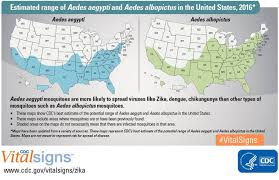 zika found in common backyard asian tiger mosquito nbc news
