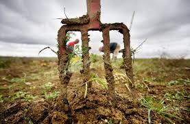 chambre d agriculture dijon dijon la crise agricole persiste mais des solutions existent