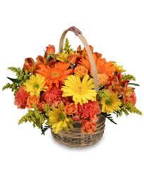 basket arrangements cheergiver basket basket arrangements flower shop network