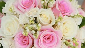 garden park family practice new york florist flower delivery by flowers on the park