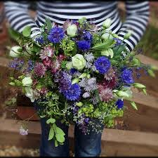 wedding flowers june uk seasonal flowers june the shed