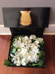 gardenia flower delivery how to get luxury blooms delivered to your door gardenias flower