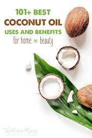 coconut oil 101 uses benefits u0026 why you should use it