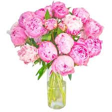 peonies delivery pink peonies is a bouquet of fresh cut flowers krokus is the best