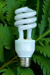 cfl light bulbs everything you want to know about them