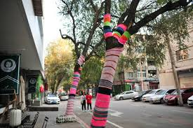 trees wear sweaters on cold days in shenyang photos and images