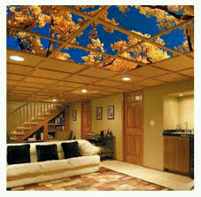 Lights For Drop Ceiling Basement by 39 Best Ceiling Images On Pinterest Basement Ideas Dropped