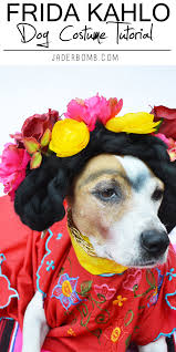 halloween dog background diy frida kahlo dog costume tutorial from michaelsmakers jaderbomb