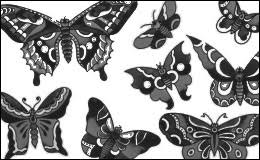 sailor jerry butterfly brushes by egoraver on deviantart