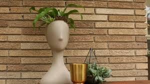 in door plant put in pot vide container gardening ideas pictures u0026 videos hgtv