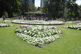 City Botanic Gardens City Botanic Gardens Cbd Brisbane Parks Mdb